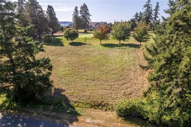 0 Discovery Place, Langley, WA 98260 (#1834421) :: Pacific Partners @ Greene Realty