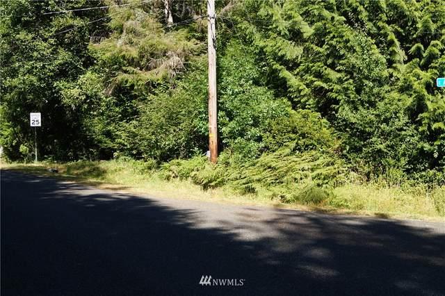 240 E Annas Way, Shelton, WA 98584 (#1834630) :: Stan Giske