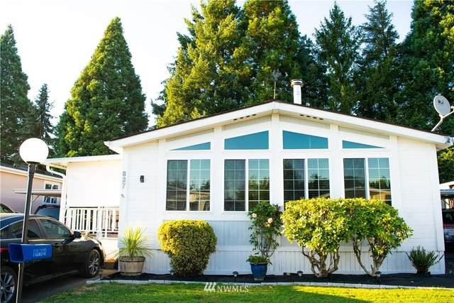 827 Pine Drive, Enumclaw, WA 98022 (#1834742) :: Pacific Partners @ Greene Realty
