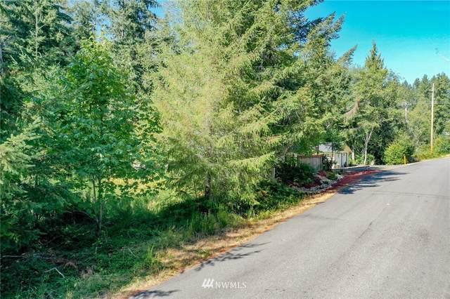 100 N Mountain View Drive, Hoodsport, WA 98548 (#1834914) :: The Shiflett Group
