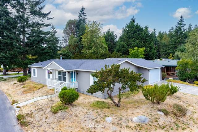 2110 Renee Place, Port Townsend, WA 98368 (#1835194) :: Pacific Partners @ Greene Realty