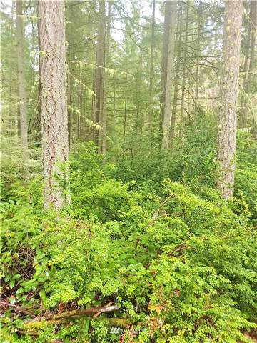 11802 Lake Place, Anderson Island, WA 98303 (#1835251) :: The Snow Group