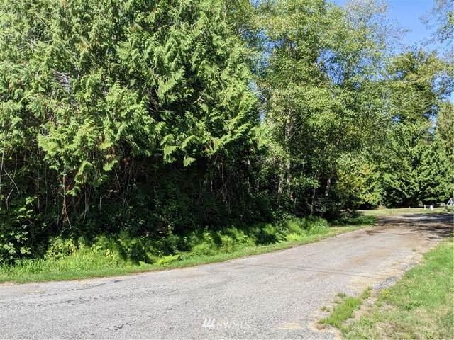 1394 Rex Street, Point Roberts, WA 98281 (#1835483) :: McAuley Homes