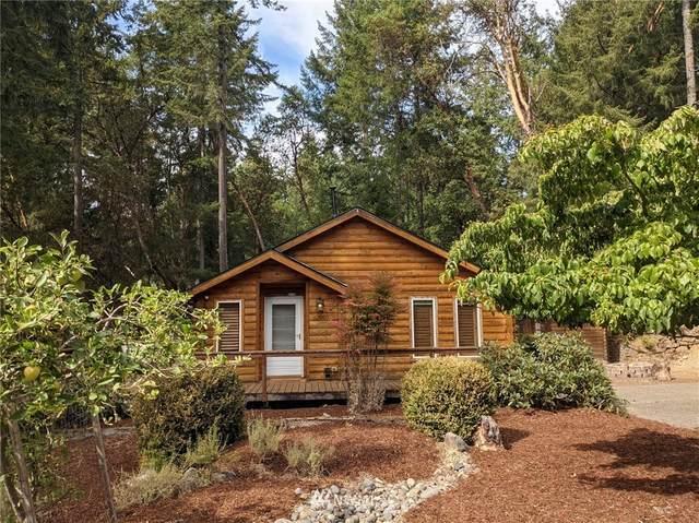 10811 Sunfish Place, Anderson Island, WA 98303 (#1837824) :: Neighborhood Real Estate Group