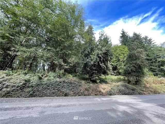 317 Butte Creek Road, Raymond, WA 98577 (#1838617) :: Franklin Home Team