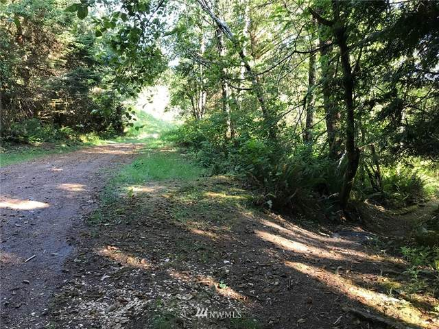 0 State Route 4, Naselle, WA 98638 (#1838746) :: Neighborhood Real Estate Group