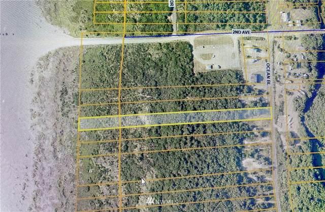 34 Ocean Blvd, Ocean Shores, WA 98569 (#1839211) :: Neighborhood Real Estate Group