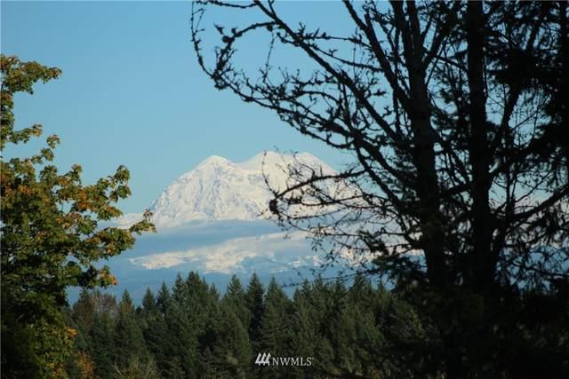 13105 Algyer Road SE, Rainier, WA 98576 (#1839490) :: The Snow Group