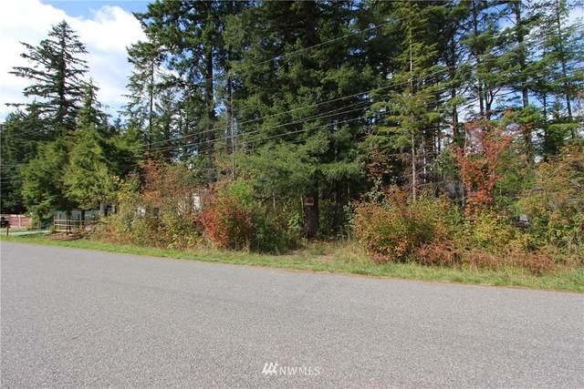 6265 Bellwood Drive, Maple Falls, WA 98266 (MLS #1839763) :: Community Real Estate Group