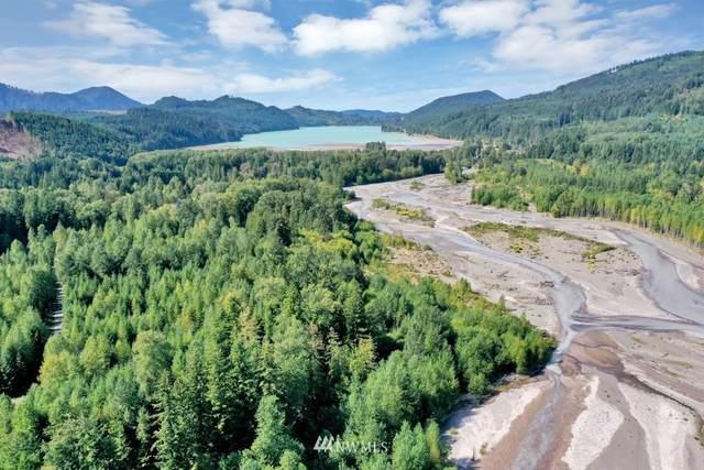 129 Rainier Vista Dr, Mineral, WA 98355 (#1839878) :: Pacific Partners @ Greene Realty