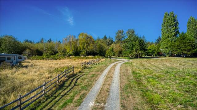 1686 Benson Road, Point Roberts, WA 98281 (#1840385) :: McAuley Homes