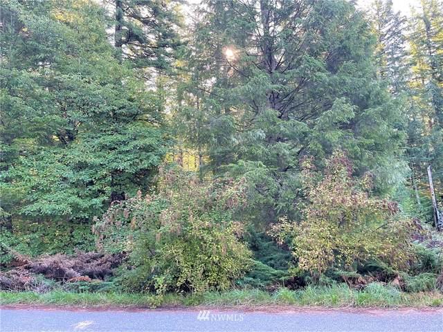 6205 Bellwood Drive, Maple Falls, WA 98266 (#1840528) :: Better Properties Lacey