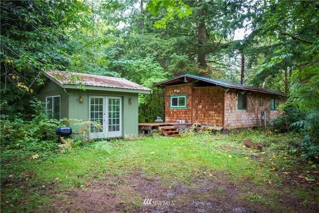 23 7 Big Tree Drive, Deming, WA 98244 (MLS #1840626) :: Community Real Estate Group