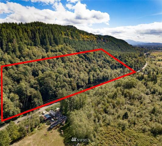 0 Old Hwy 99 North Road, Bellingham, WA 98229 (#1840641) :: Pacific Partners @ Greene Realty
