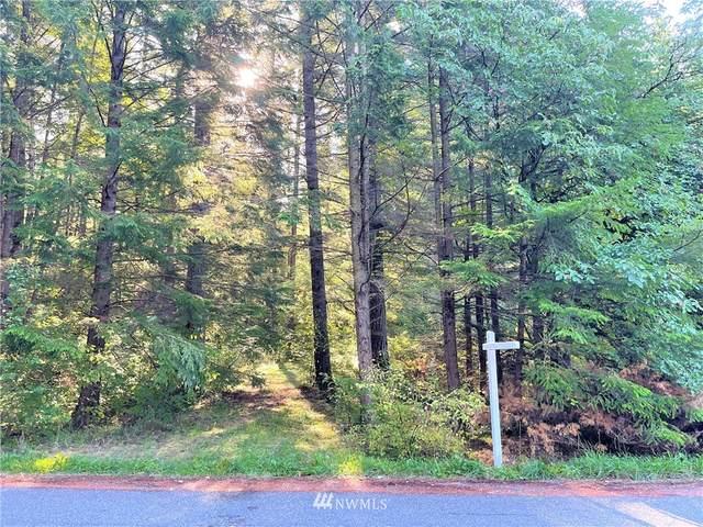 6207 Bellwood Drive, Maple Falls, WA 98266 (#1840681) :: Better Properties Lacey