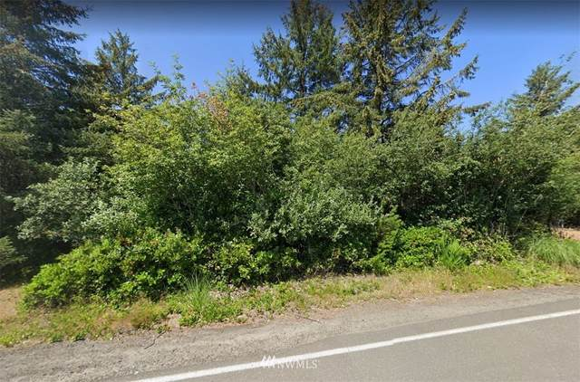171 Point Brown Avenue SW, Ocean Shores, WA 98569 (#1841076) :: Better Properties Real Estate