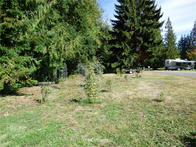 9999 Dungeness Meadows, Sequim, WA 98382 (#1841157) :: The Kendra Todd Group at Keller Williams
