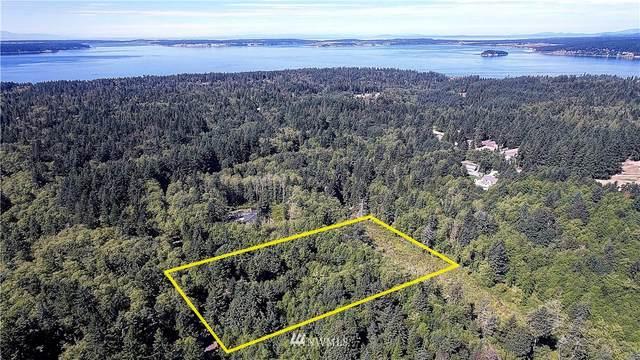 0 Dodge Road, Camano Island, WA 98282 (#1841211) :: M4 Real Estate Group