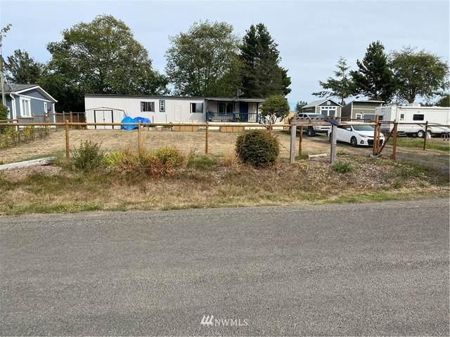 24304 Ash Place, Ocean Park, WA 98640 (#1841347) :: The Kendra Todd Group at Keller Williams