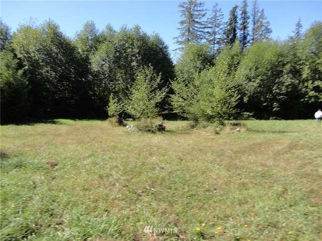 263 Dream View Lane, Onalaska, WA 98570 (#1841595) :: Ben Kinney Real Estate Team