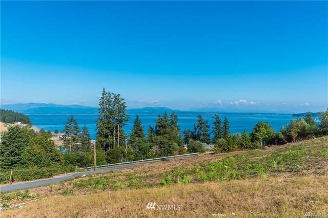 0 Polnell & View Haven Drive, Oak Harbor, WA 98277 (#1841634) :: Ben Kinney Real Estate Team