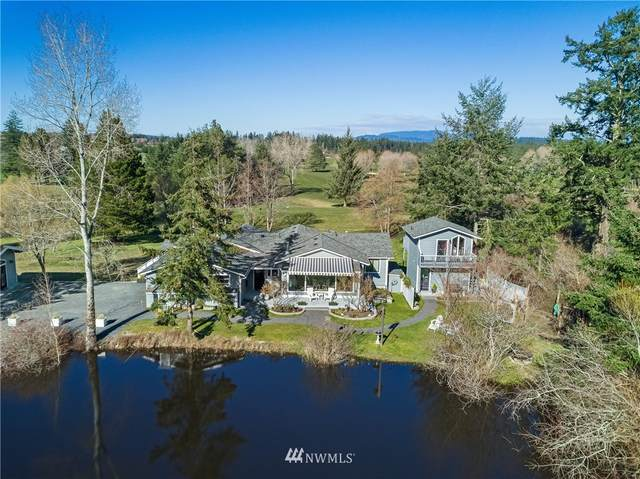 87 Bison Place, Friday Harbor, WA 98250 (#1842226) :: Pacific Partners @ Greene Realty