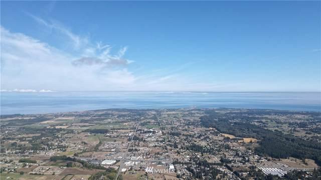 123 Sunny View Dr, Sequim, WA 98382 (#1842484) :: Rhonda Bishop