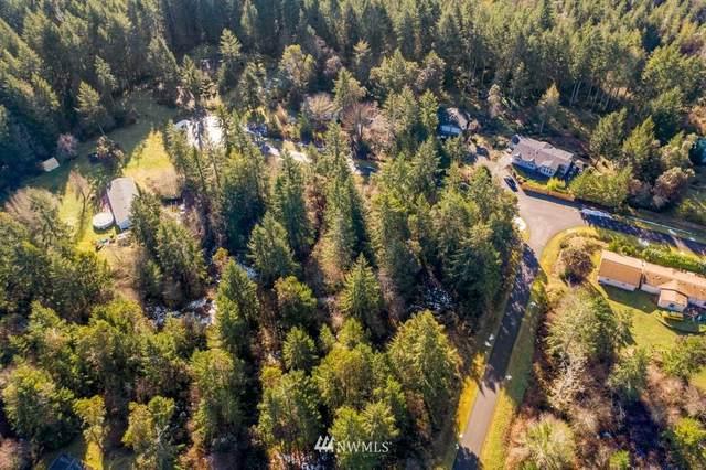 2929 200th Avenue Sw, Lakebay, WA 98349 (#1843198) :: Better Properties Real Estate