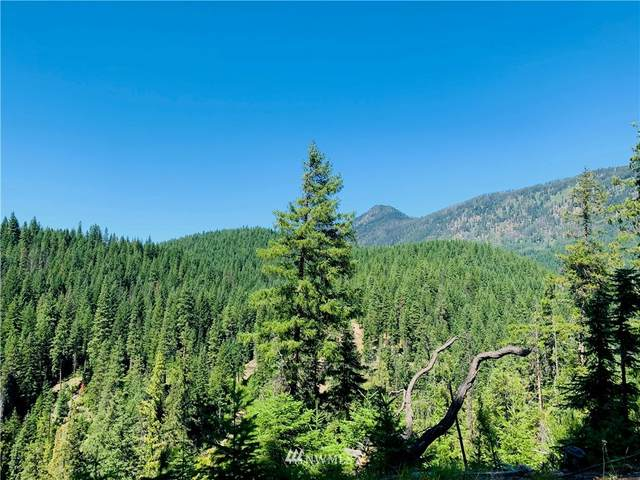 0 Nka, Leavenworth, WA 98826 (MLS #1845084) :: Community Real Estate Group
