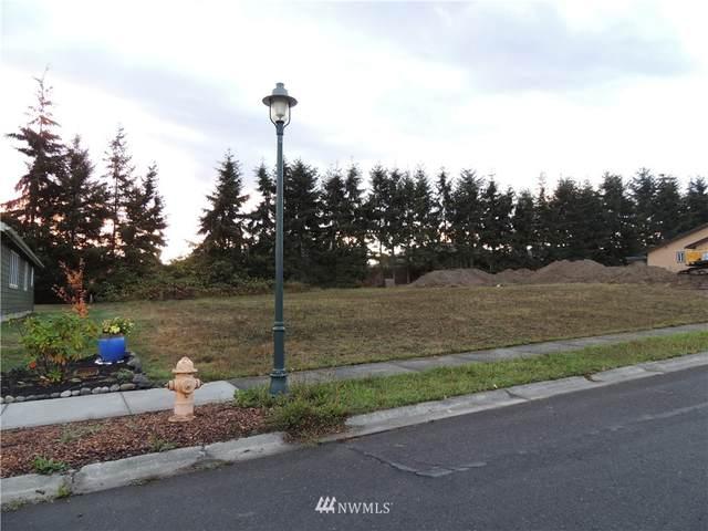 1200 Elk Loop Loop, Sequim, WA 98382 (#1845339) :: Ben Kinney Real Estate Team