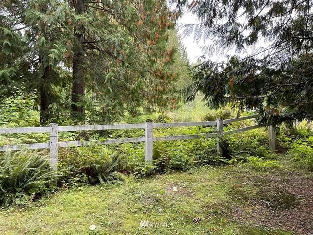 13911 Dubuque Road, Snohomish, WA 98290 (MLS #1845379) :: Reuben Bray Homes
