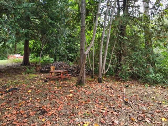 170 E Soundview Drive, Shelton, WA 98584 (#1846046) :: McAuley Homes