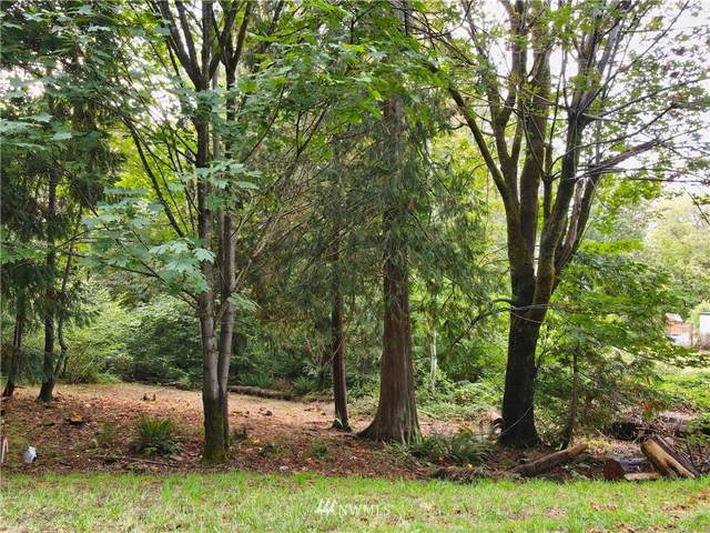 160 E Soundview Drive, Shelton, WA 98584 (#1846054) :: McAuley Homes