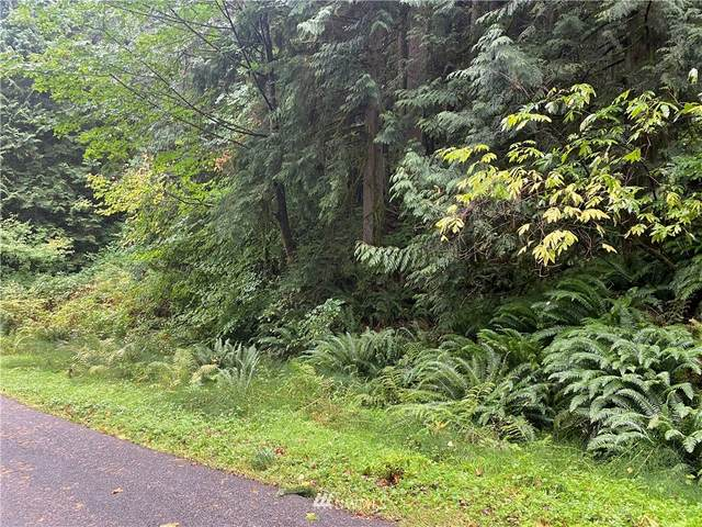 13 Wintercress Way, Bellingham, WA 98229 (#1846745) :: Keller Williams Western Realty