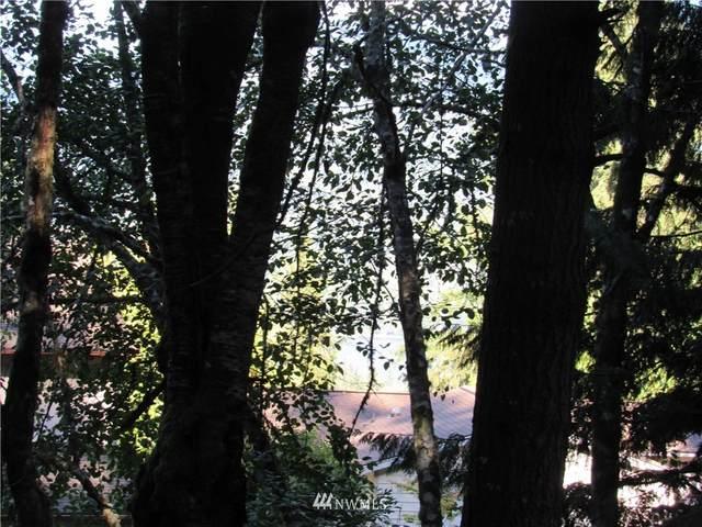 37 Louise View Drive, Bellingham, WA 98229 (#1846799) :: Keller Williams Western Realty