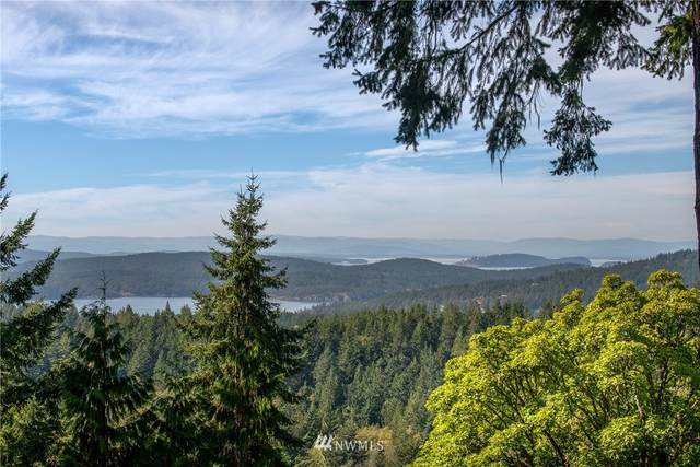 9 Lot# Spring Hill Road, Orcas Island, WA 98245 (#1846934) :: Better Properties Lacey