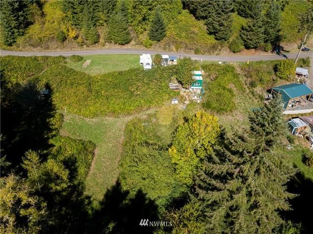 123 Idaho View Road, Woodland, WA 98674 (#1847105) :: Stan Giske
