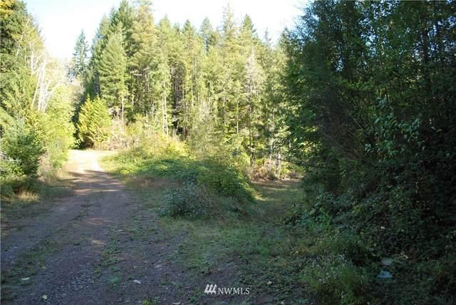 1 Suncrest Drive, Hoodsport, WA 98548 (#1848225) :: Stan Giske