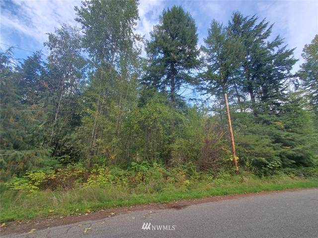 7586 7590 Canyon View Drive, Deming, WA 98244 (MLS #1848290) :: Reuben Bray Homes