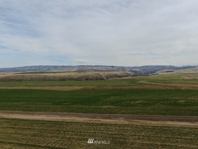 44 Lewis Circle, Milton-Freewater, OR 97862 (#1848374) :: Pacific Partners @ Greene Realty