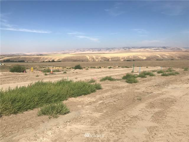 46 Lewis Circle, Milton-Freewater, OR 97862 (#1848391) :: Pacific Partners @ Greene Realty