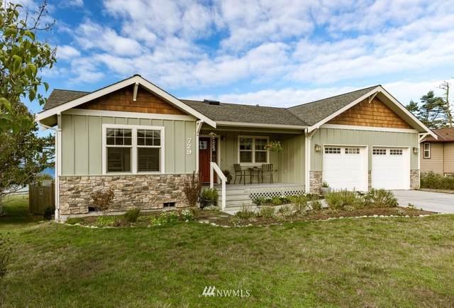 729 La Cana Street, Coupeville, WA 98239 (#1849039) :: Neighborhood Real Estate Group
