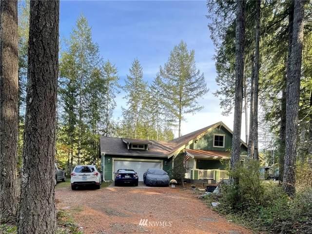 281 N Goldeneye Drive, Hoodsport, WA 98548 (#1849153) :: Stan Giske