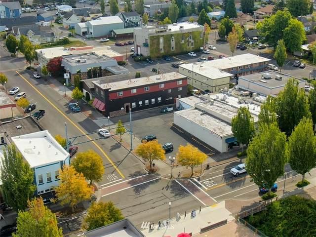 738 Peace Portal Drive, Blaine, WA 98230 (#1849599) :: McAuley Homes