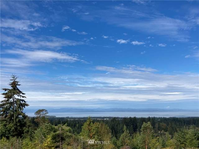 9999 Sunset Heights Drive, Port Angeles, WA 98363 (#1849948) :: Icon Real Estate Group