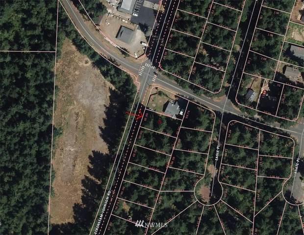 10217 Eckenstam Johnson Rd, Anderson Island, WA 98303 (#1850150) :: Neighborhood Real Estate Group