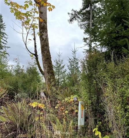 0 NE 91st Way, Carnation, WA 98014 (MLS #1850312) :: Reuben Bray Homes