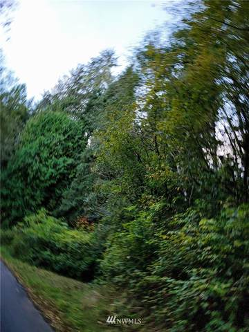 227 Hull Creek Road, Grays River, WA 98621 (#1851053) :: The Kendra Todd Group at Keller Williams