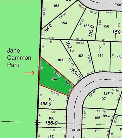 9914 129th Avenue Ct, Anderson Island, WA 98303 (#1851305) :: Franklin Home Team
