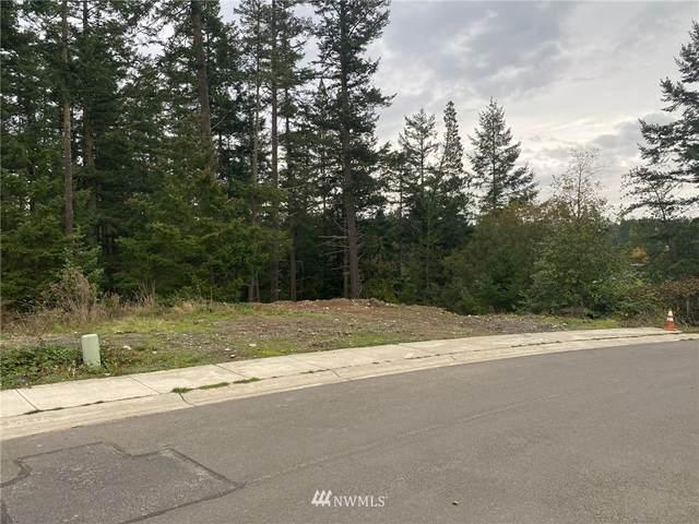 541 Kelsando Circle, Friday Harbor, WA 98250 (#1851398) :: McAuley Homes